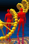 Is DNA beyond Darwinism
